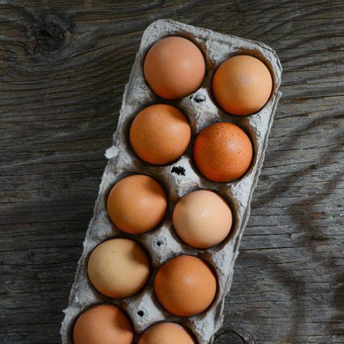Eggs – Free Range 1 dozen